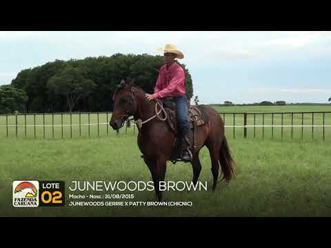 LOTE 02 - JUNEWOODS BROWN