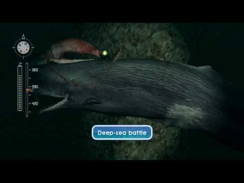 Let's Play Endless Ocean: Blue World, Episode 29: Zahab Region Depths