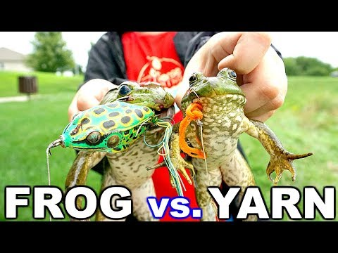 Bull Frogs Love YARN?! Frog vs. Yarn Fishing Challenge!!