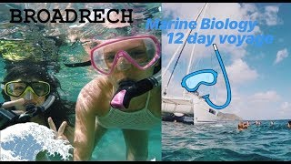 Video Broadreach 12 day Marine Biology Adventure download MP3, 3GP, MP4, WEBM, AVI, FLV Oktober 2018