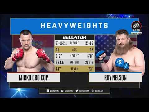 Mirko Cro Cop Filipovic Vs Roy Nelson 2 FULL FIGHT