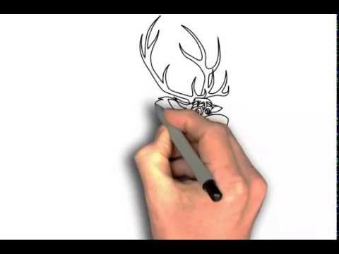 how to draw sven from frozen step by step easy
