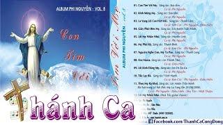 Album Phi Nguyễn Vol.08 - Con Tìm Với Mẹ - Phi Nguyễn