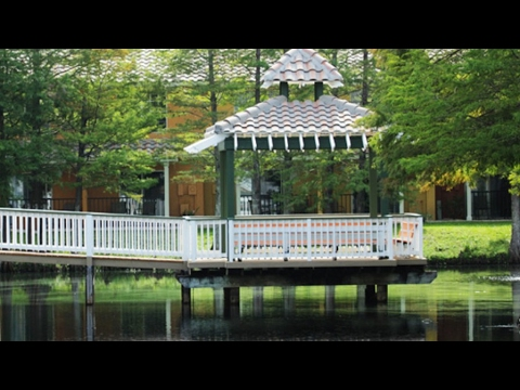 Best Western Saratoga Resort and Villas in Florida