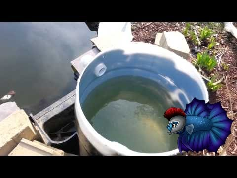 How to build a d i y pond filter step by step youtube for Building a koi pond step by step