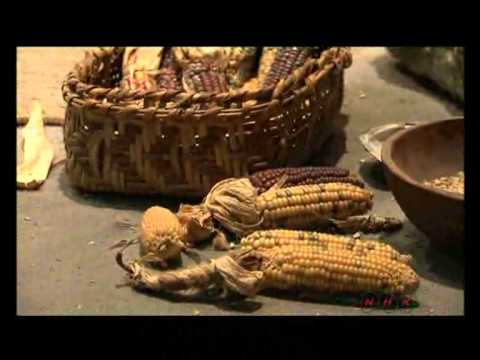 Cahokia Mounds State Historic Site (UNESCO/NHK)