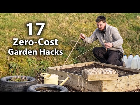 17 Brilliant FREE Vegetable Gardening Hacks | More Food for Less Effort