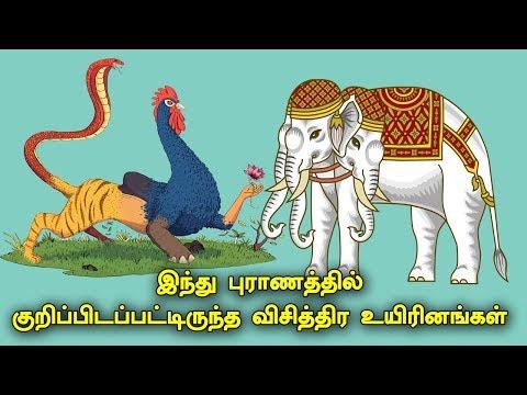 இந்து புராணத்தில் குறிப்பிடப்பட்டிருந்த விசித்திர உயிரினங்கள் | 10 Creatures from Hindu Mythology