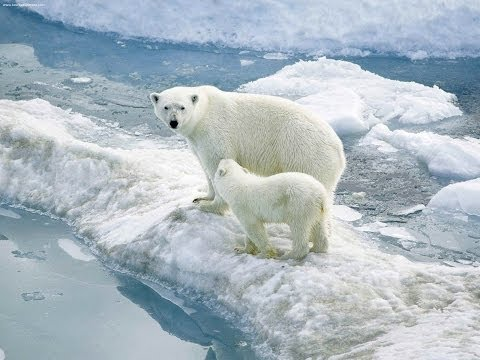 'Climate Change' vs 'Global Warming' Makes a Difference