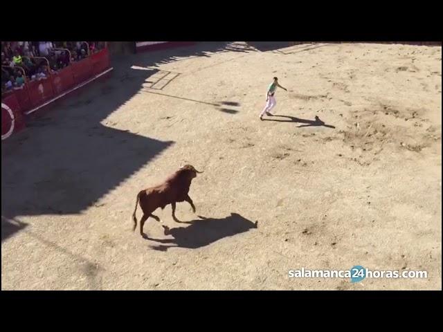 Concurso de cortes en Villarino de los Aires
