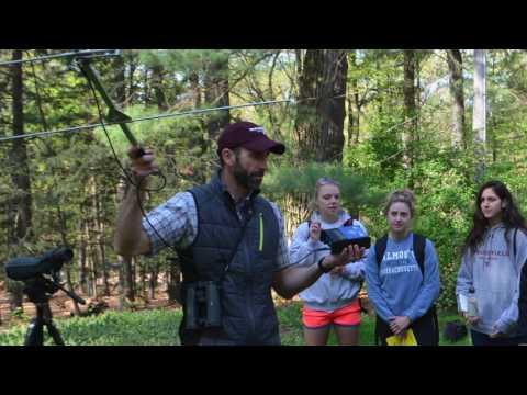 Springfield College Environmental Science Major Chloe Hedrich
