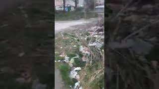 Гори сміття в центрі Кременця