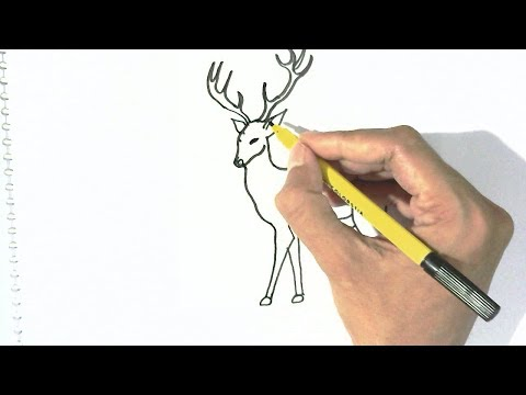 how-to-draw-deer-in-easy-steps-for-children,-kids,-beginners