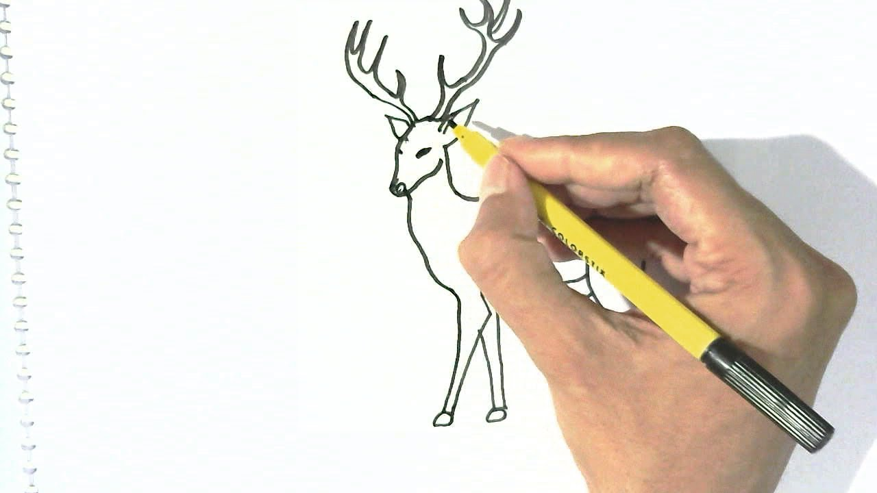 How To Draw Deer In Easy Steps For Children Kids Beginners Youtube