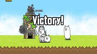 Боевые коты атакуют мир. ВПЕРЁД!
