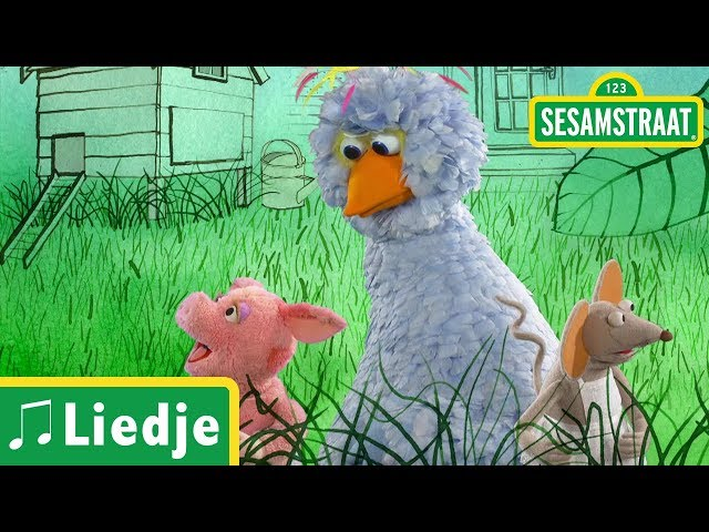 Groen is gras - Kinderliedje - Sesamstraat