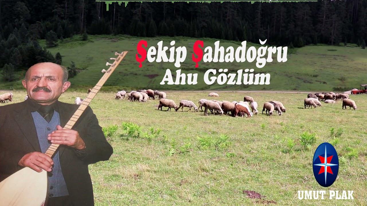 Musa Eroğlu - Niye Gamlanırsın Divane Gönlüm (U.H.)/(Yaz Gelir)1995