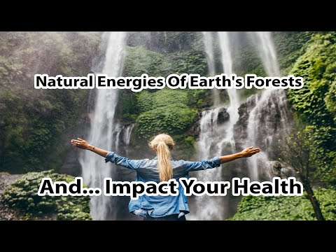 How Natural Energies Of The Earth's Forests Impact Your Health By Author Anna Maria Clement