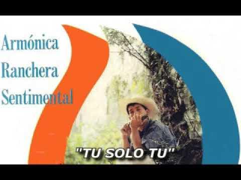 Armonica Sentimental Ranchera Hermosa Musica Instrumental Mexicana Youtube
