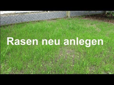 Rasen Anlegen Rasen Säen Rasen Aussäen Ausführliche Anleitung Rasen