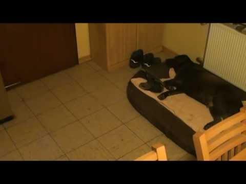 zdf drehscheibe deutschland einbruch im urlaub doovi. Black Bedroom Furniture Sets. Home Design Ideas