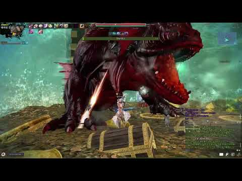 Vindictus] Second Redeemers Battle : The Other Side of Moon