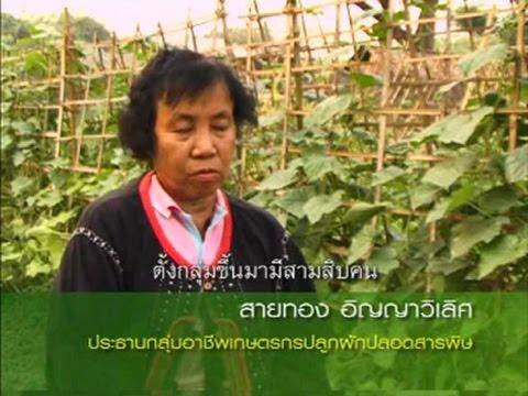 สารคดีงานวิจัย เรื่อง รูปแบบการบริหารจัดการกลุ่มอาชีพเกษตรกร