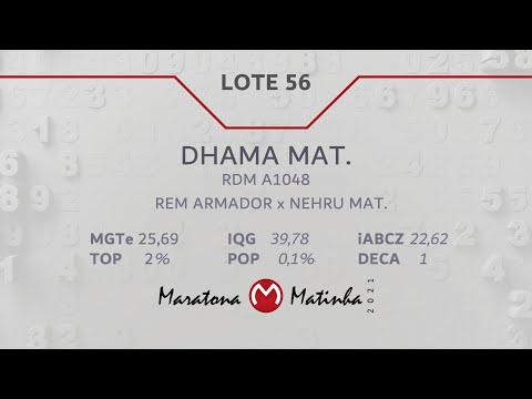 LOTE 56 Maratona Matinha