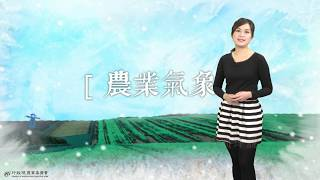農業氣象1071218