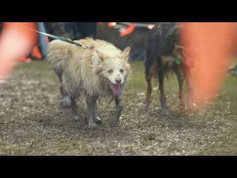Dirty Dog Challenge 2019