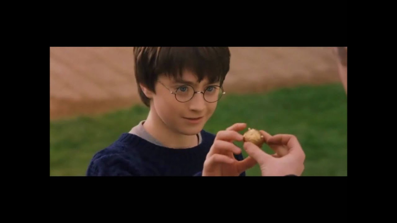 How to Play Quidditch From Harry Potter | HobbyLark