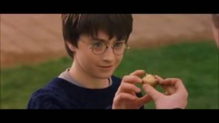 Oliver Wood explaining Quidditch