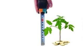 видео оценка стоимости бизнеса
