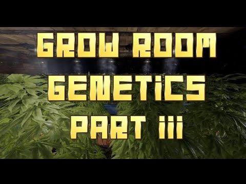 RUST | INDOOR GROW ROOM / GENETICS MADE EASY | PART 3