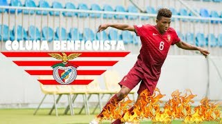 GEDSON FERNANDES-  The stars that Benfica is waiting for!