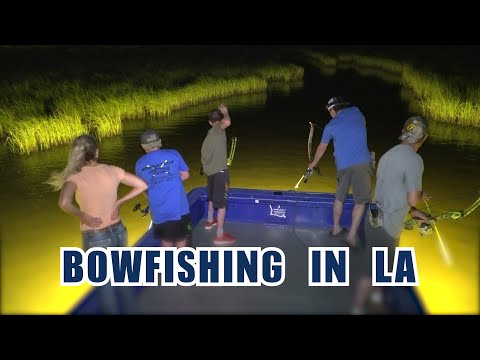 Bowfishing In Louisiana