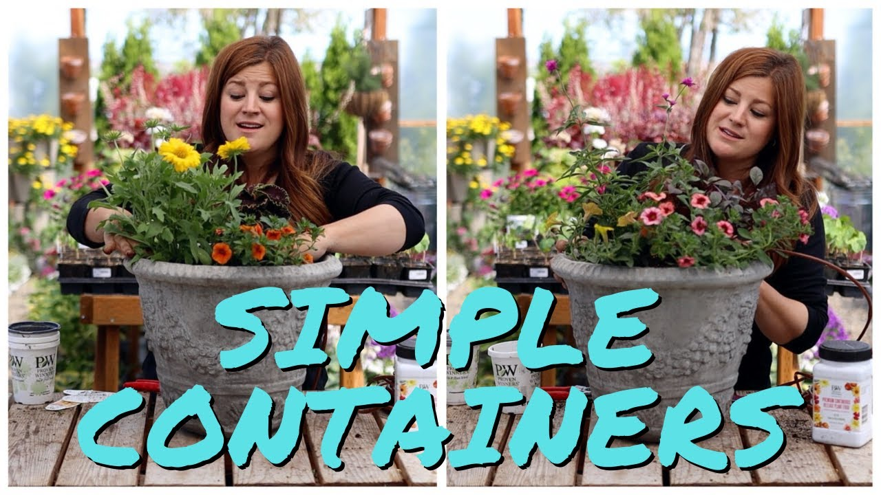 Flower Alley Experiment Simple Container Ideas For Full Sun Garden Answer Youtube