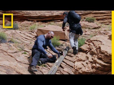 Dave Bautista Makes a Log Ladder | Running Wild With Bear Grylls