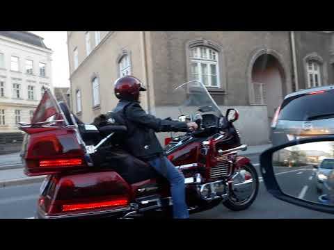 Fanny dog in motorcycle - send post-card as James Blund in Salzburg