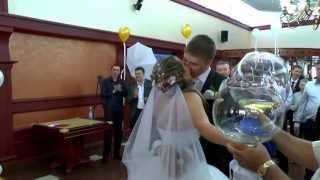 Мгновения свадебного дня. Оренбург. тел.269-296 Мастерская счастья