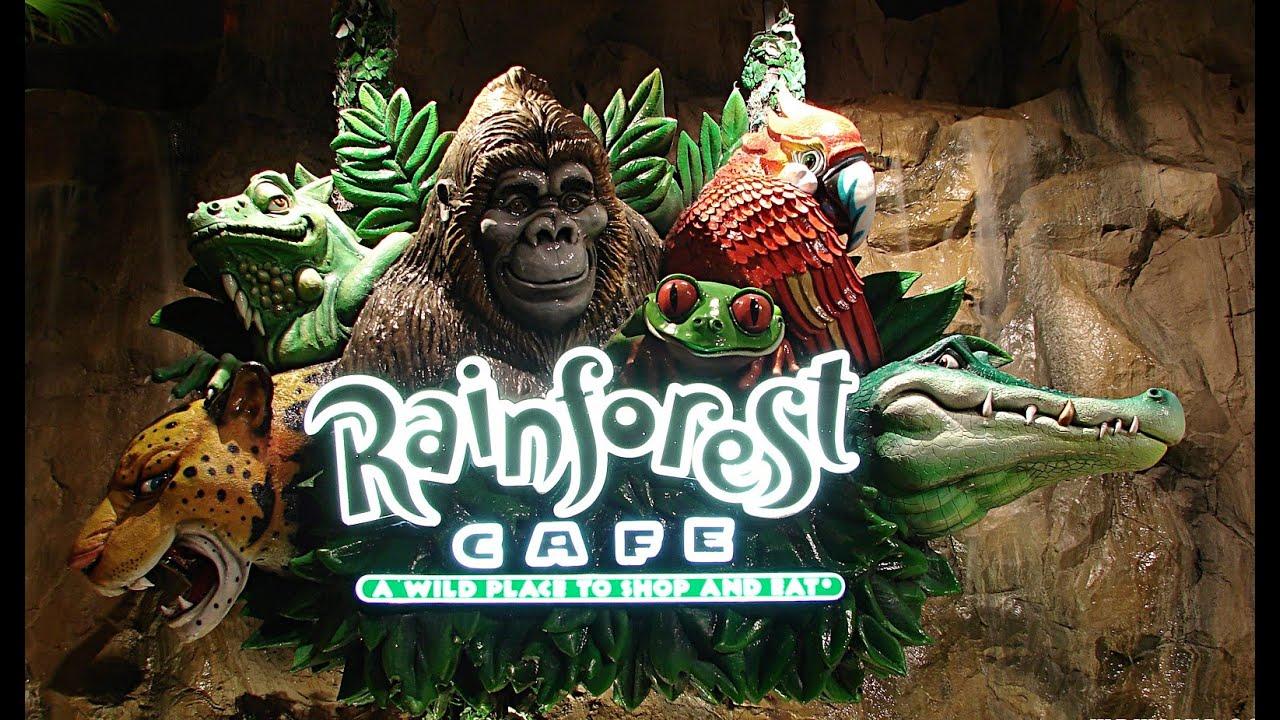 Rainforest caf london vlog 2016 youtube for Rainforest londra