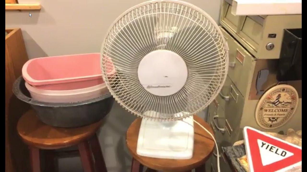 Windmere 7 Oscillating Fan : Windmere kd quot oscillating fan youtube