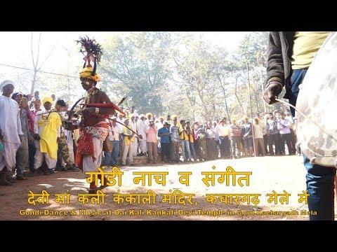 गोंडी नाच और संगीत: गोंड कचारगढ़ मेला, गोंदिया Gondi Dance & Music: Gond Kachargadh Mela, Gondia
