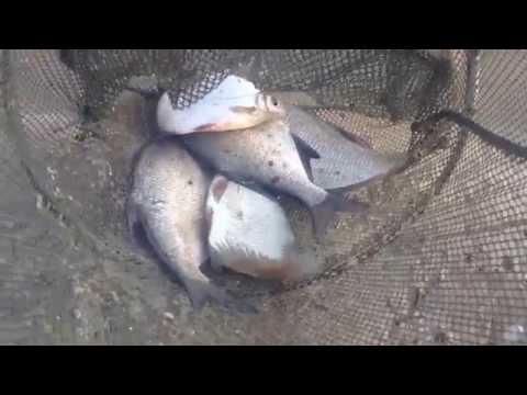 рыбалка на цимлянское серпухов