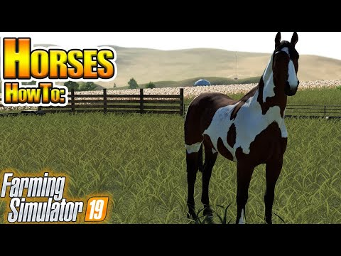 Horses in Farming Simulator 19 - How To in FS19
