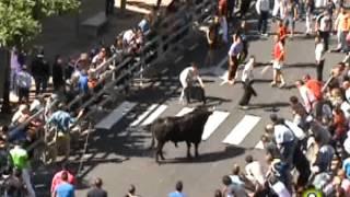 Toro de la Feria 2014 - Dulcero - Medina del Campo