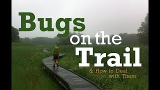 Bugs On the Trail & How to Deal with Them