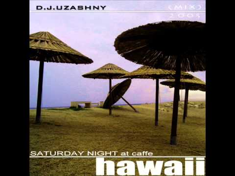 D.J.Uzashny - SATURDAY NIGHT AT HAWAII - (house,disco...) 2005 mix