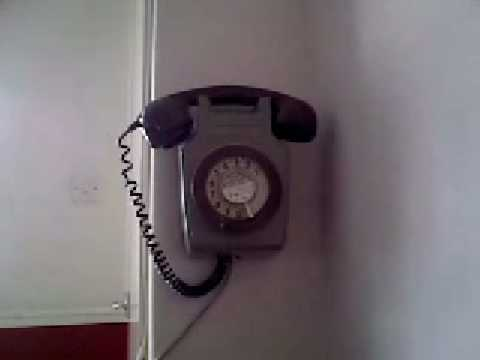 Our New Phone