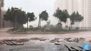 【实拍】超强风台下的香港 海平面上升 最高陣風時速256公里